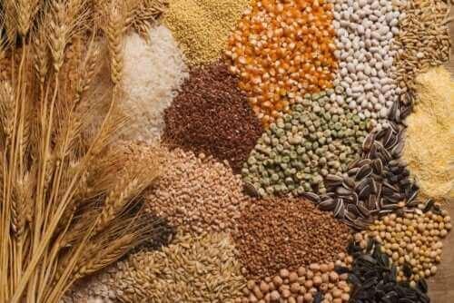 Siementen sisällyttäminen ruokavalioon: 3 vinkkiä