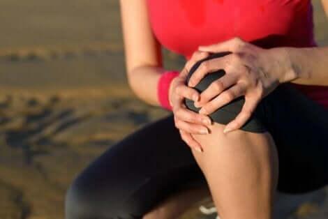 Pes anserinus -alueen tendiniitti aiheuttaa kipua polven alueella