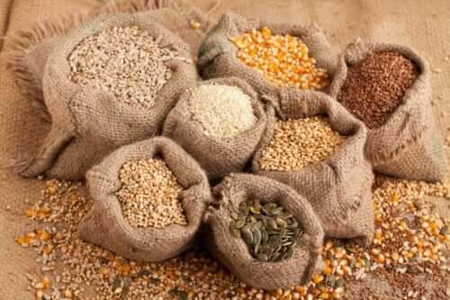 Siementen sisällyttäminen ruokavalioon on hyvä tapa lisätä rasvojen ja proteiinin saantia.