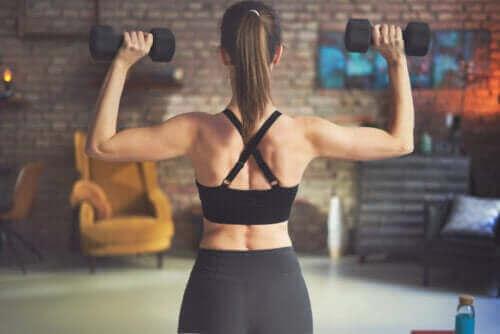 Parhaat selkäharjoitukset käsipainoilla