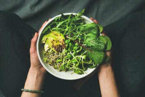 Mitä eroa on vegaanin, kasvissyöjän ja fleksitaarin välillä?