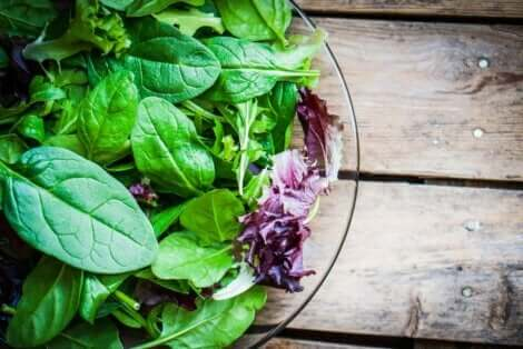 Vegaanien tulisi syödä joitakin lisäravinteita puutosten välttämiseksi