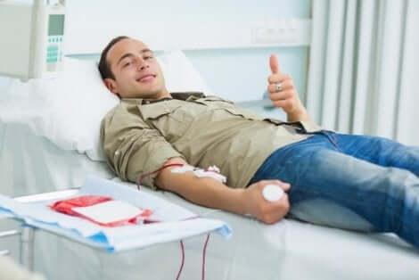 Onnettomuuksien lisääntyminen on syy siihen, miksi kesällä on tärkeää luovuttaa verta