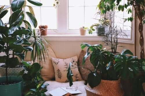 Ideoita rentoutumisnurkan luomiseksi kotiin