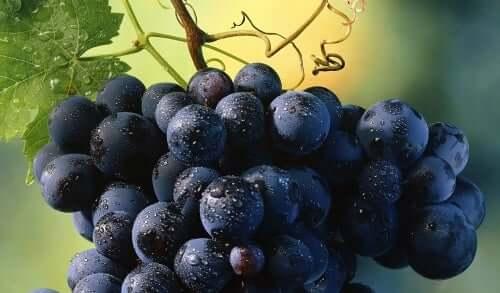 Viinirypäleet haittaavat painonpudotusta.