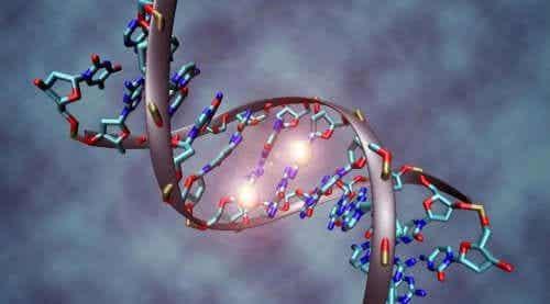 Syövän geneettinen perusta tunnetaan nykyään paremmin