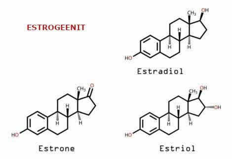 Päänsäryn ja hormonien välinen yhteys