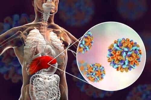 Lasten hepatiitti: mitä siitä tulee tietää