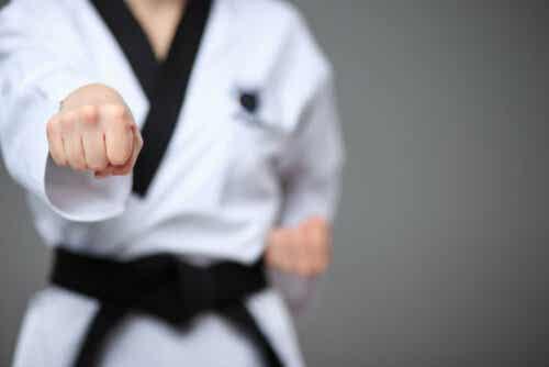 Karaten ja taekwondon erot eivät ole järin suuret.