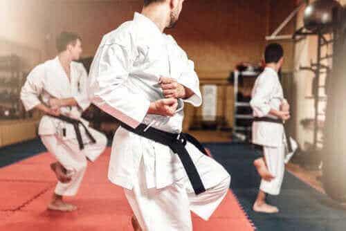 Karaten ja taekwondon väliset erot