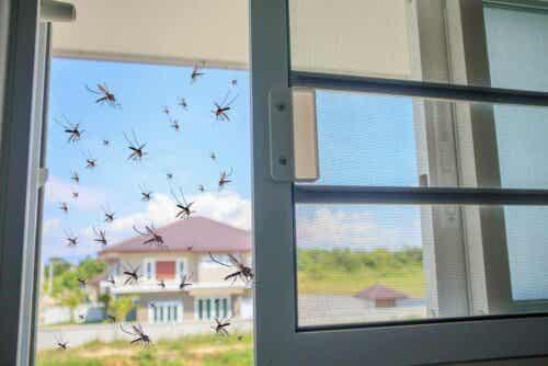 Hyttysverkot pitävät kodin vapaana hyttysistä.