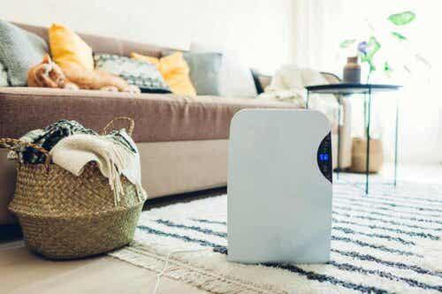 Kosteusvahinkojen ehkäisy kosteudenpoistajan avulla.
