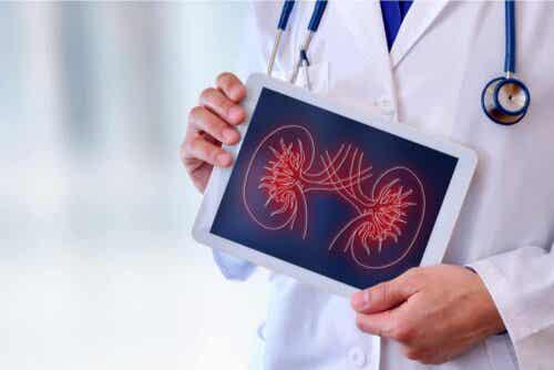 Hypertension seuraukset munuaisille ovat salakavalat.