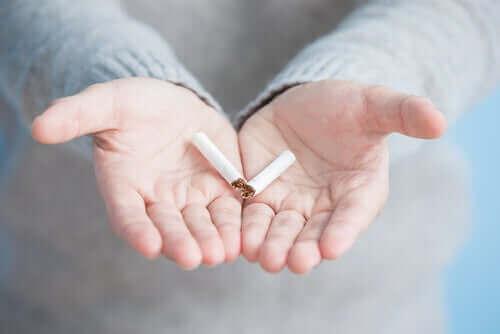 Kannabiksen ja tupakan yhteiskäyttö