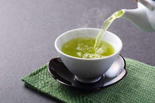 Ruskea rasvakudos aktivoituu vihreää teetä juomalla.