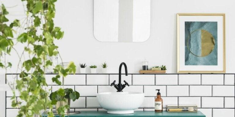 Vinkkejä kylpyhuoneen sisustamiseen kasveilla