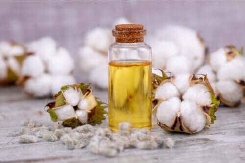 Puuvillansiemenöljy: käyttö, hyödyt ja riskit