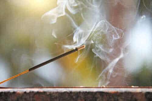 Suitsukepidikkeen valmistaminen kotona: 4 ideaa